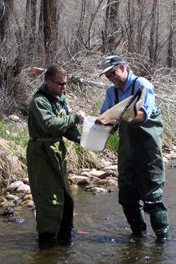 Ryan Fitzpatrick and Dana Winkelman sampling for T. tubifex on Williams Fork River, CO.