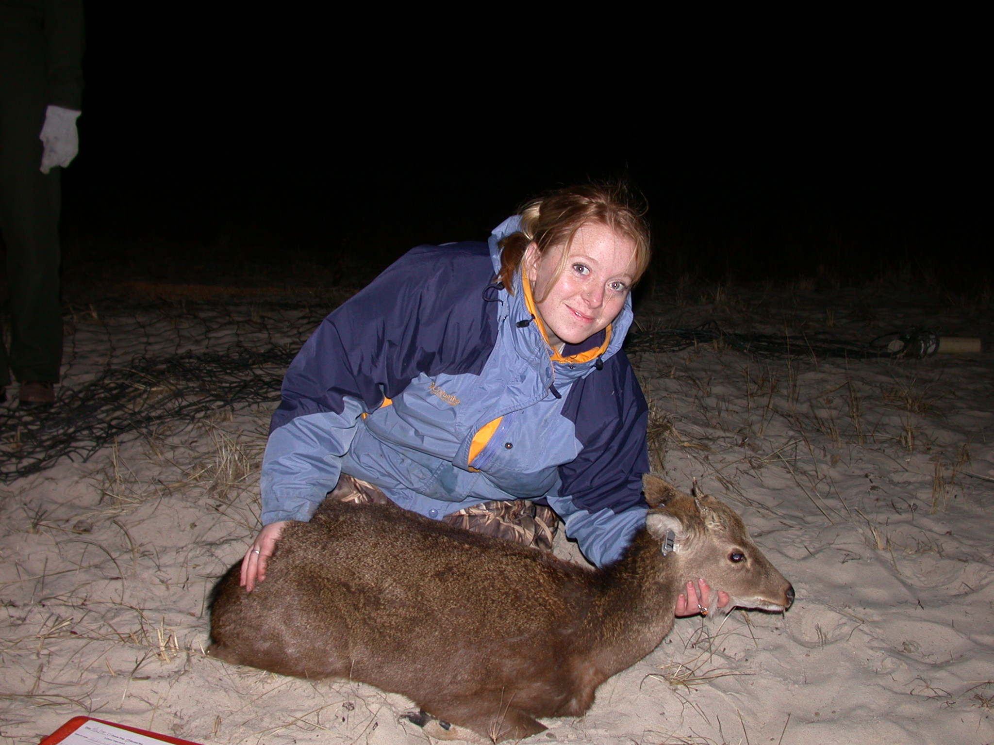 Sonja Christensen with captured sika deer
