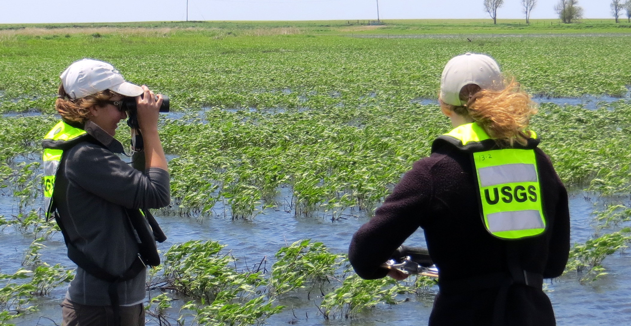 Caitlyn Gillespie and her crew survey for shorebirds in the Rainwater Basin, Nebraska.
