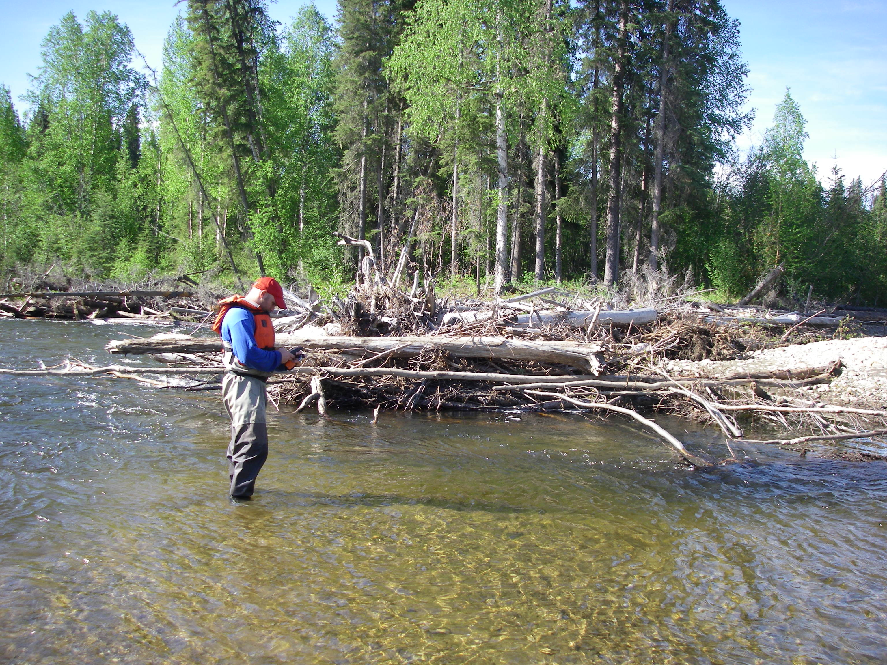 Brock Huntsman measures physical habitat on the Chena River, Alaska