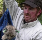 CRU Chief John Organ processing a Canada lynx kitten during a long term research collaboration between the Maine Department of Inland Fisheries and Wildlife and the Fish and Wildlife Service.