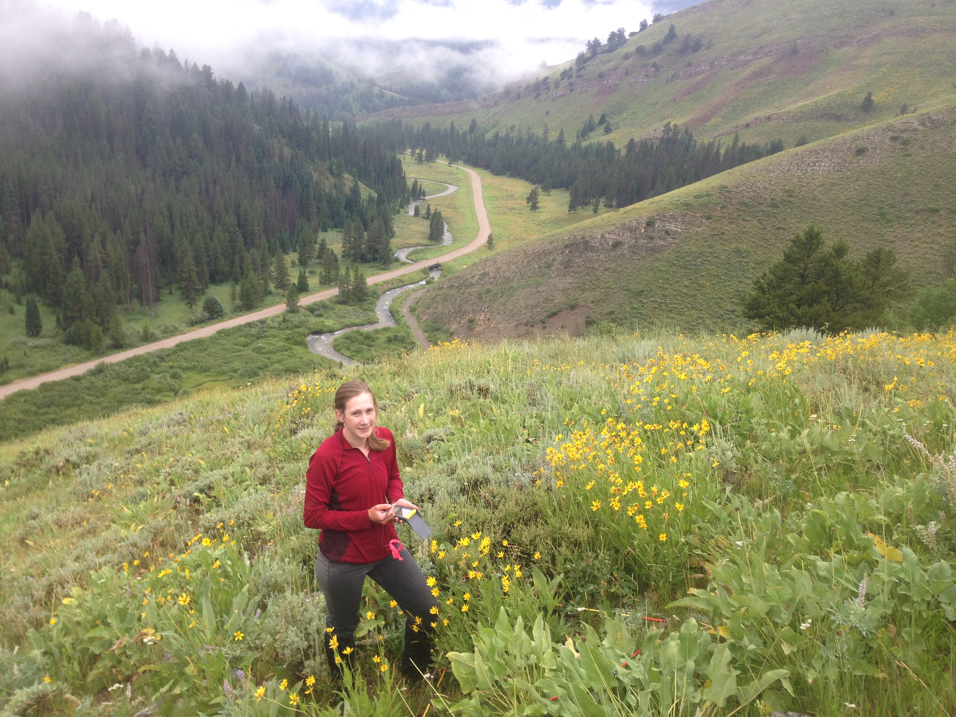 Ellen Aikens records vegetation data at a stopover location for her PhD research.