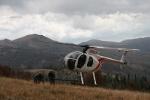 Absaroka Elk Helicopter