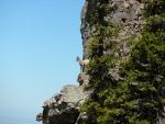Teton Range bighorn sheep