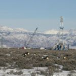 Mule Deer and Natural Gas development