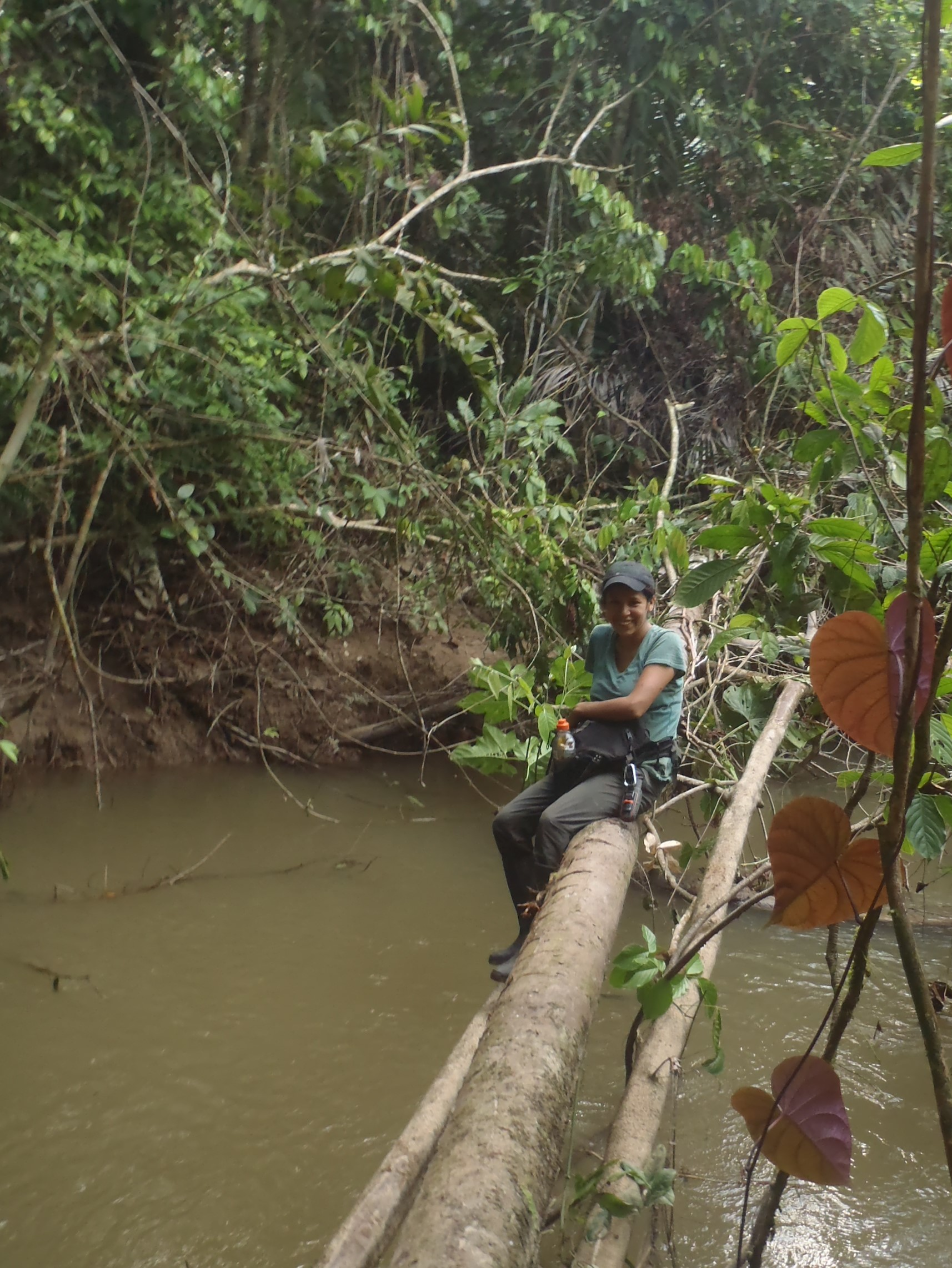 Field work at the Peruvian amazon