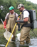 Using backpack electrofishing gear to sample near-shore species in the Caney Fork River