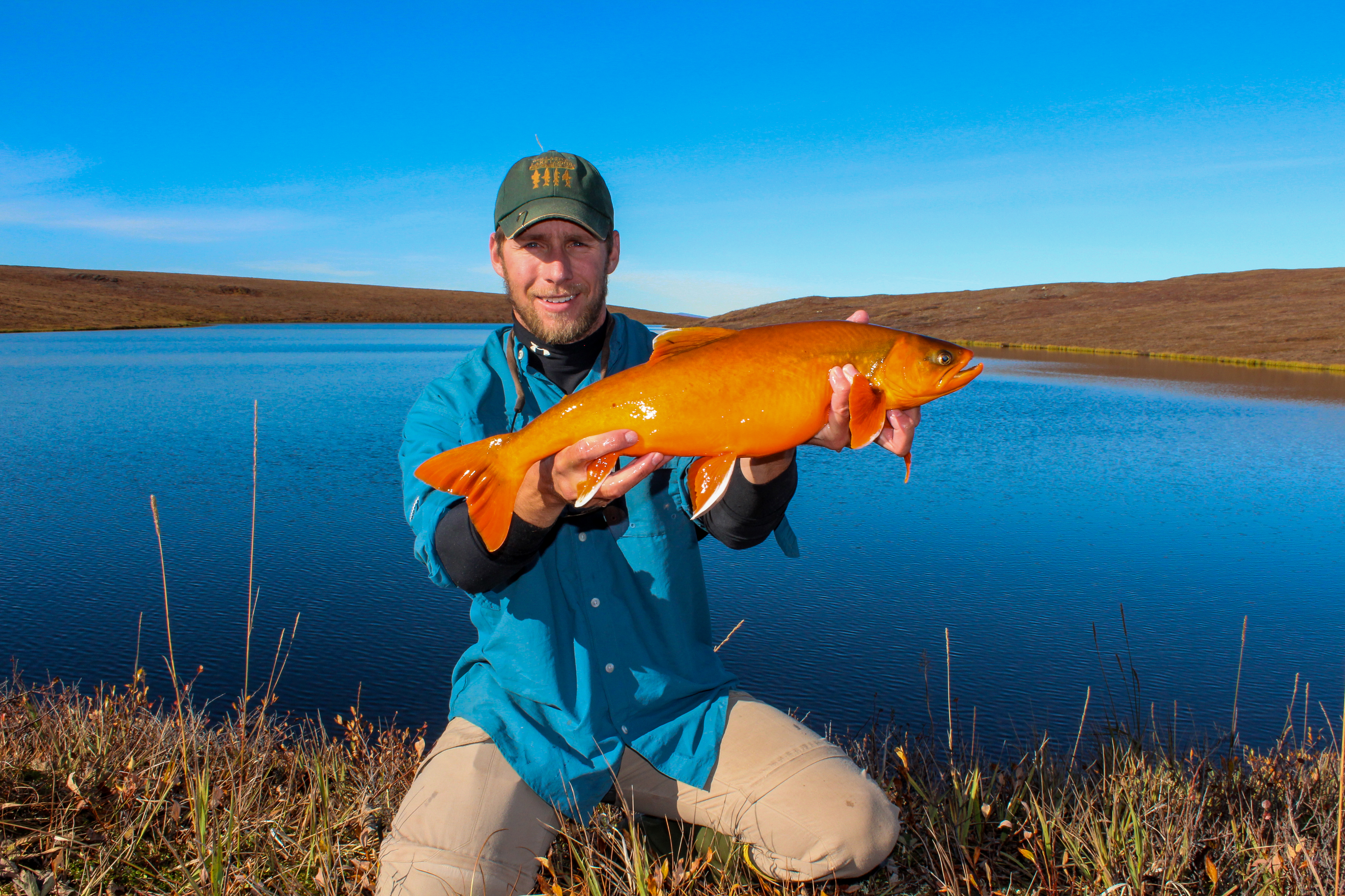 Stephen Klobucar (former Coop PhD graduate student) holding a PIT tagged Arctic Char as part of the National Science Foundation, Arctic Long Term Research.  Many of these char lakes have been monitored for more than 20 years as indicators of environmental change.