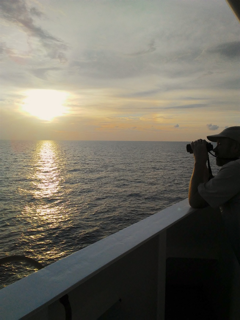 Dr. Chris Haney (collaborator) surveying for seabirds, Gulf of Mexico