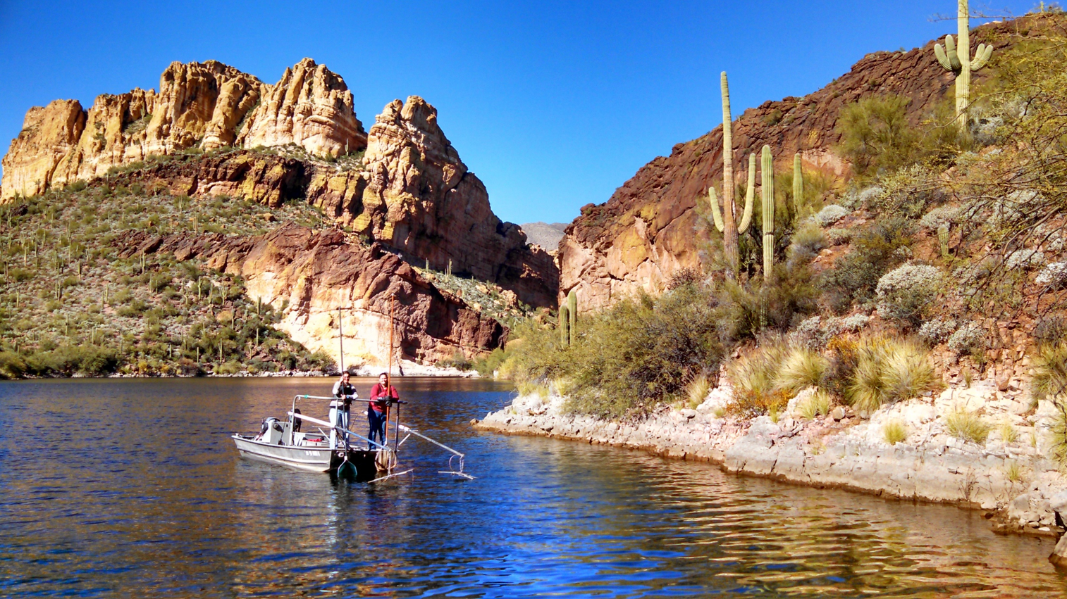 Students electrofishing an Arizona reservoir.