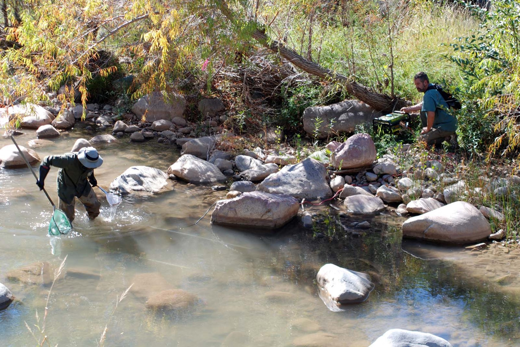 Arizona Coop Unit scientists using a prepositioned electrofisher in an Arizona stream.