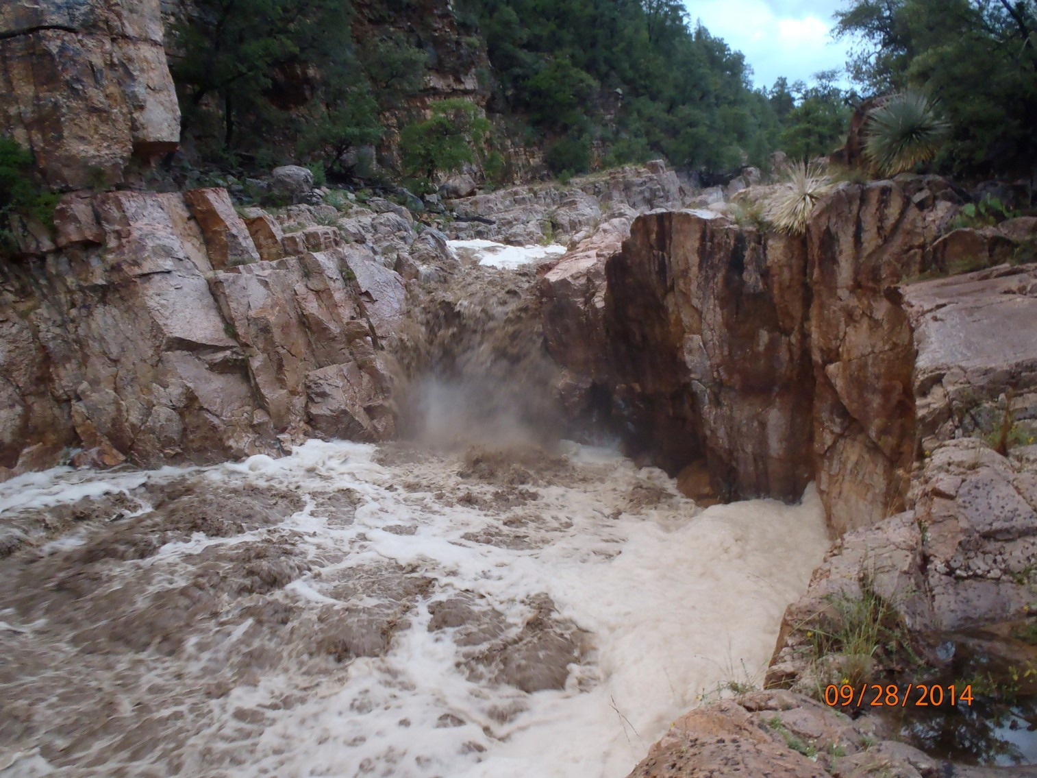 Flash flood in an Arizona stream
