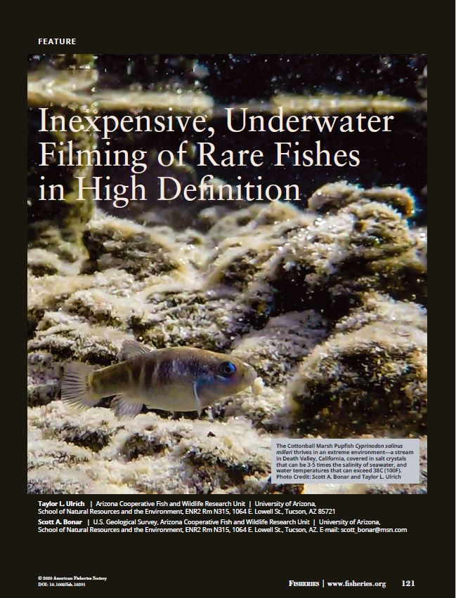 How to inexpensively capture high def UW fish video featured in Fisheries magazine, March, 2020.