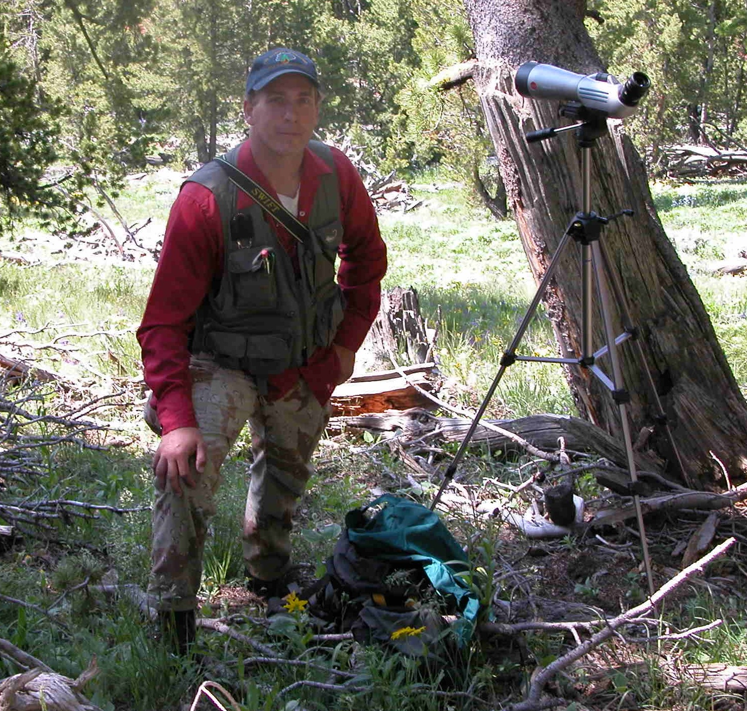 Assistant Unit Leader-Wildlife, Shawn McKinney, conducting whitebark pine community research in Yellowstone NP.