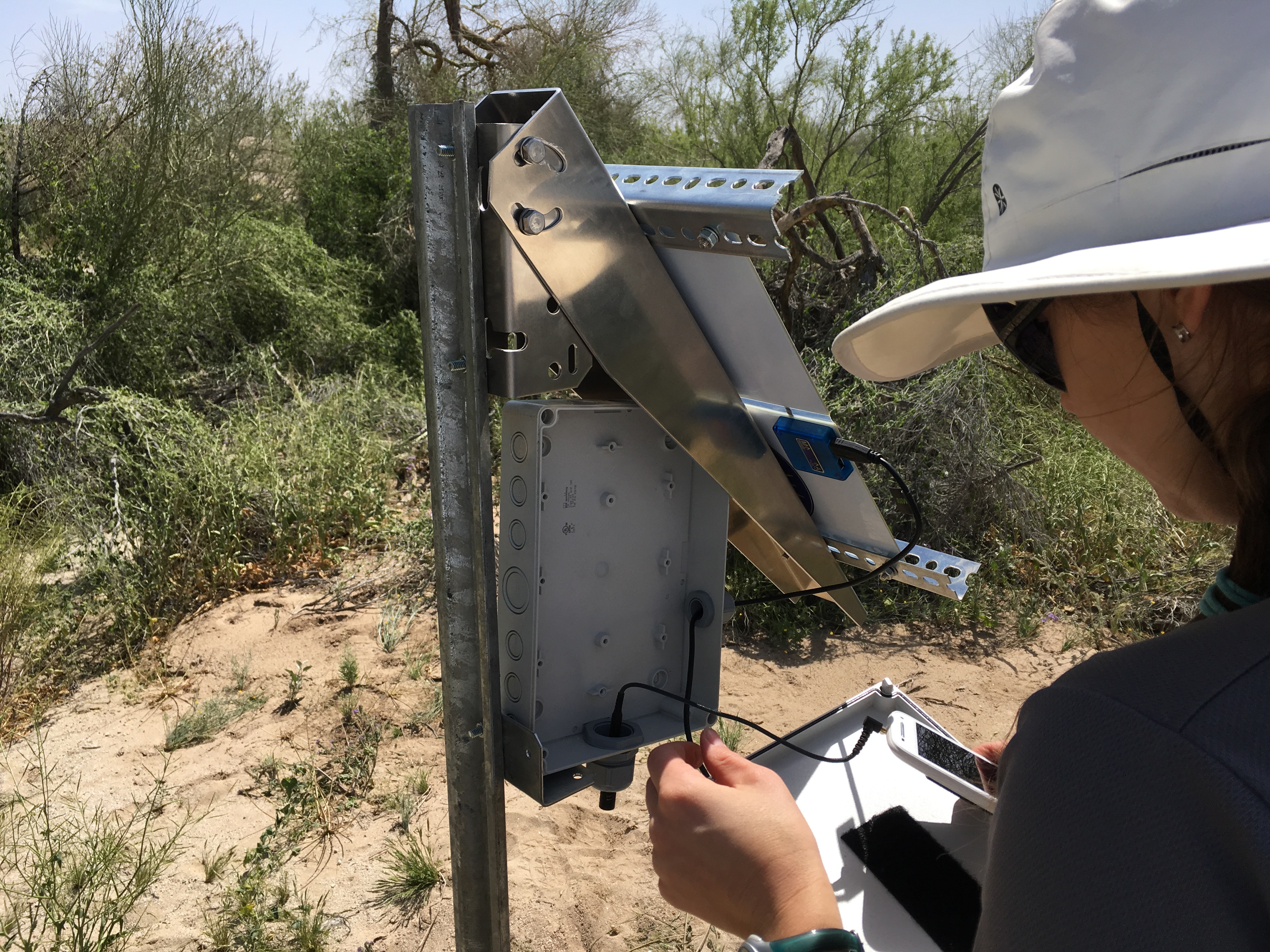 Cathleen Balantic setting up a cell phone monitoring station in the Riverside East Solar Energy Zone.